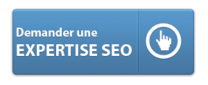 Demande Expertise SEO Assistant Marketing Web | Webmaster | Référenceur Paris Ile de france Essonne 91