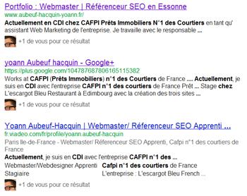 duplicate content (contenu duplique) Assistant Web Marketing | Webmaster | Référenceur SEO en Essonne 91